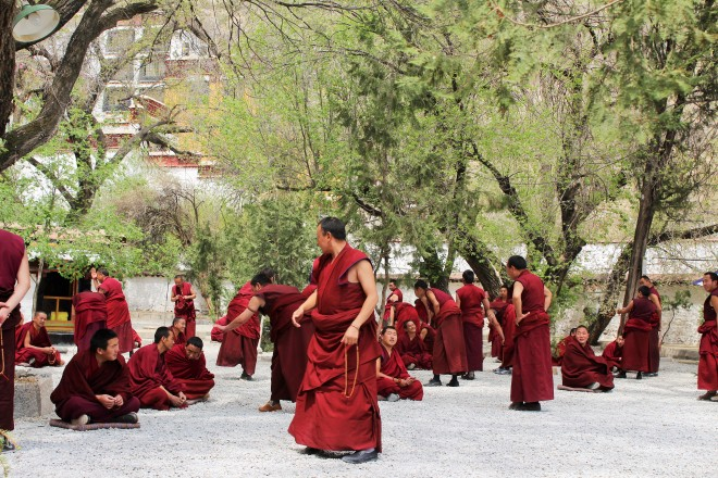 Debating Monks at Sera Monastery in Lhasa (photo by Cibele Reschke)